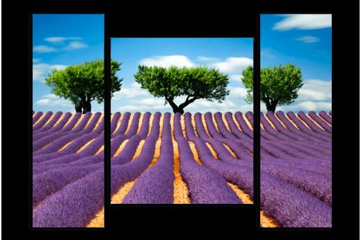 Модульная картина Деревья на Лавандовом поле