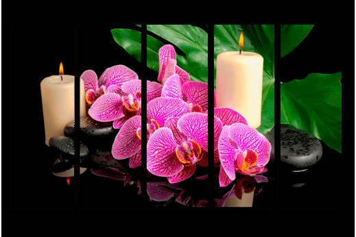 Модульная картина Орхидеи СПА